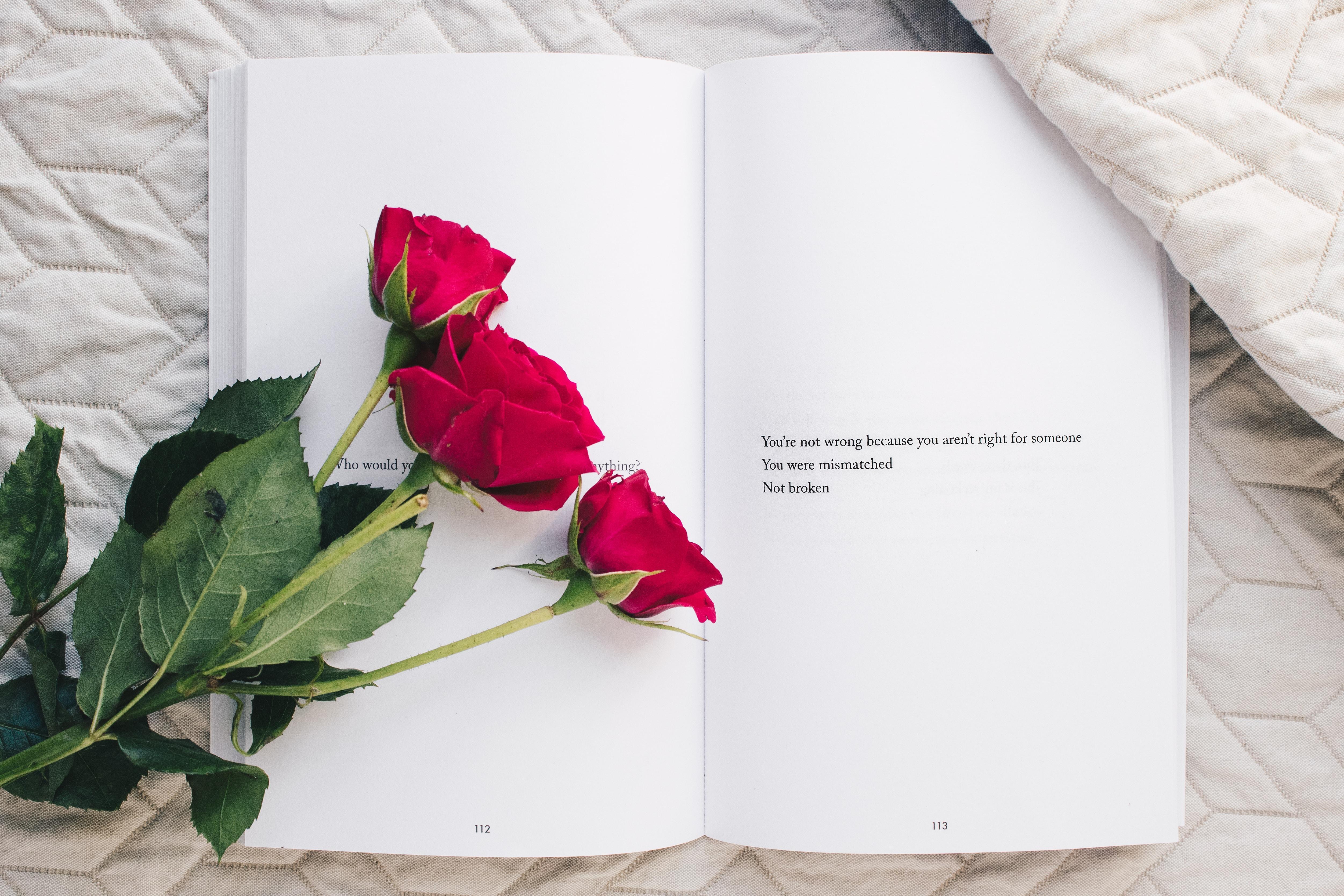 Exposition de l'Amour